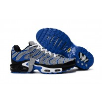 Nike Air Max TN Men Shoes White Blue Grey Wholesale
